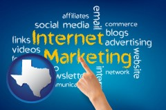 texas map icon and internet marketing phrases